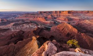 Peter-West-Carey-Utah2012-1021-6514.jpg