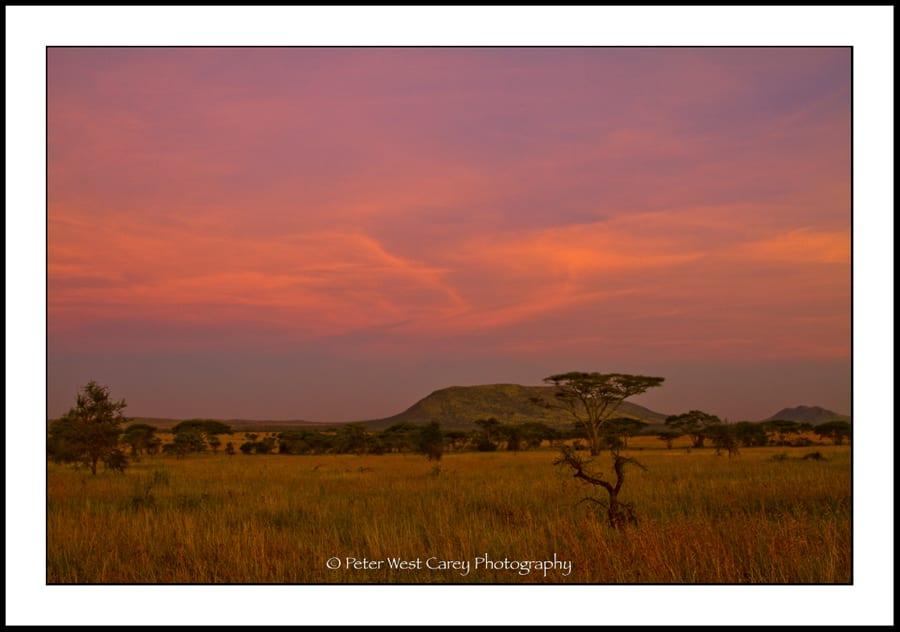 Serengeti After Sunset