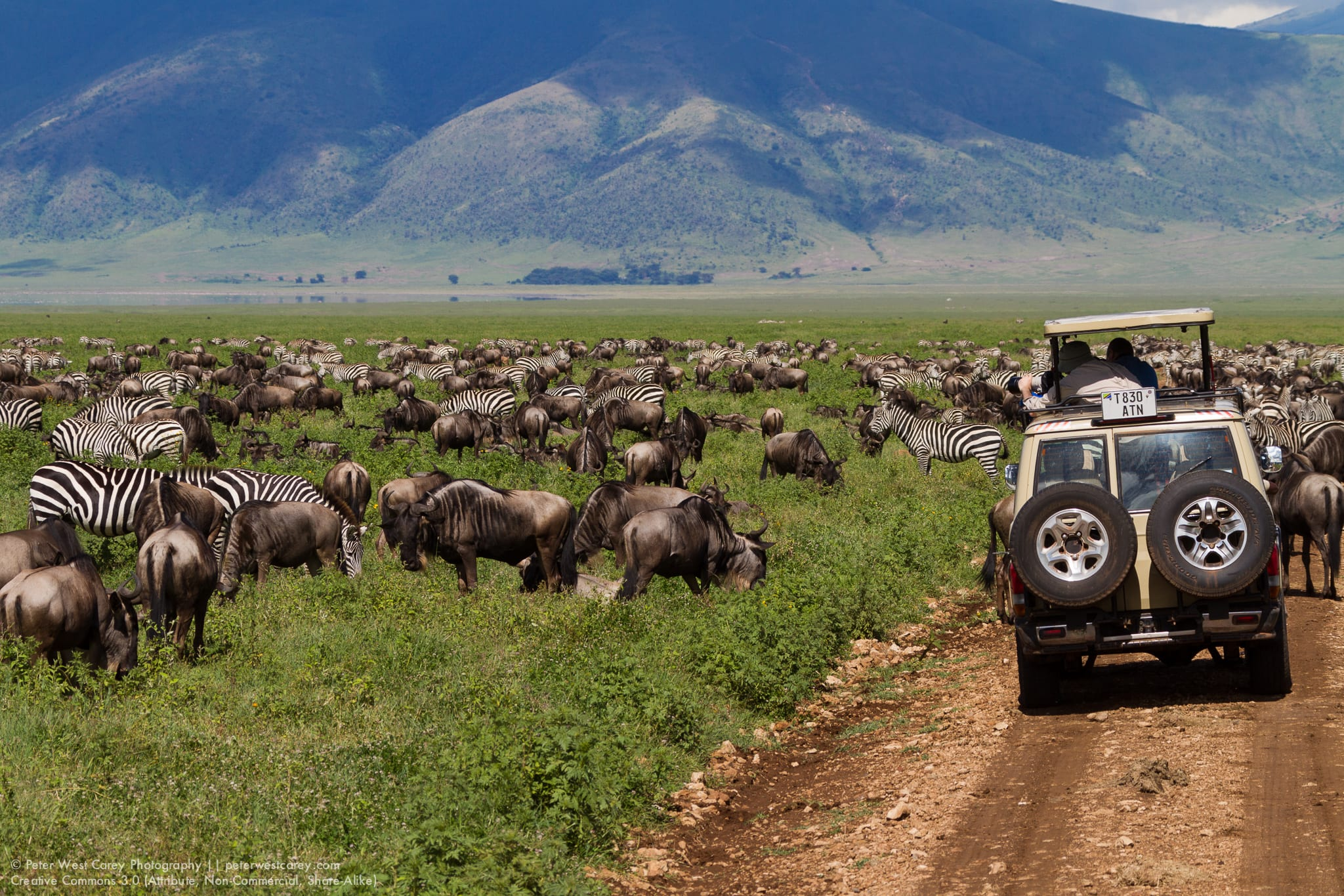 Peter-West-Carey-Tanzania100321-095928-2897